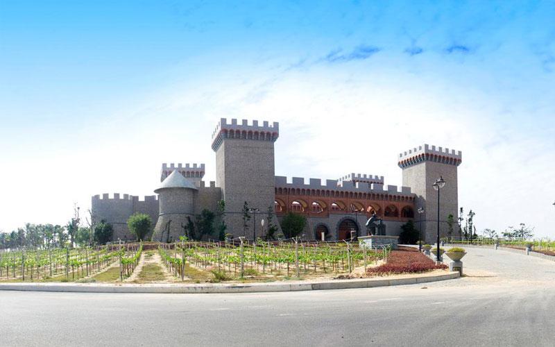 Tour Phan Thiết – Hải Đăng – Lâu đài rượu vang